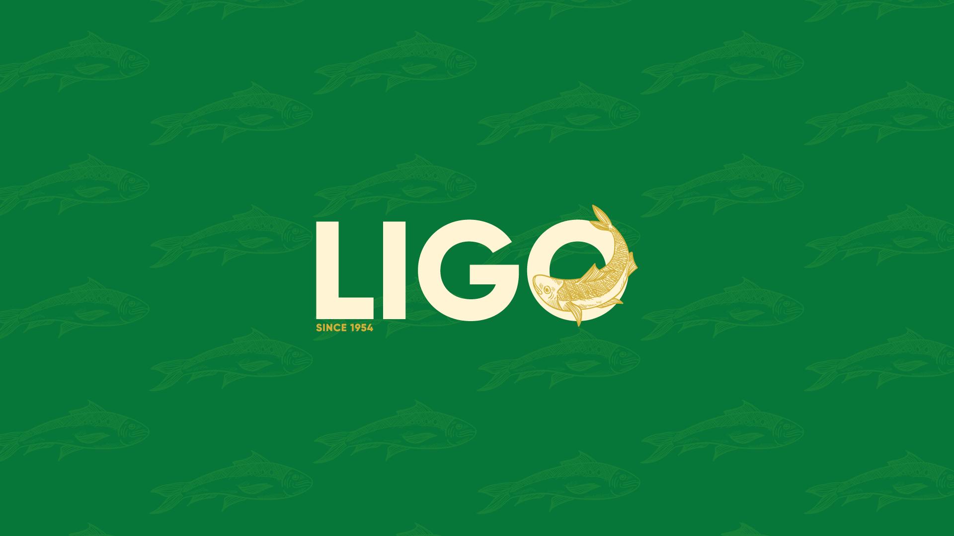 Ligo Logo Header Image